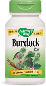 Burdock Root 100 Capsules - Product Image