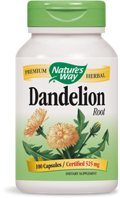 Dandelion Root 100 Capsules - Product Image