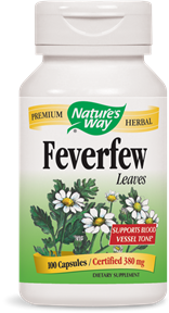 Feverfew Herb Capsules - Product Image