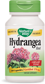 Hydrangea Root 100 Capsules - Product Image