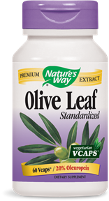 Olive Leaf Standardized 20% 60 Vcaps - Product Image