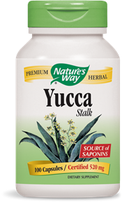 Yucca Stalk Capsules - Product Image